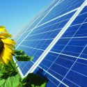Solar Power Is Gaining Traction Around the Globe